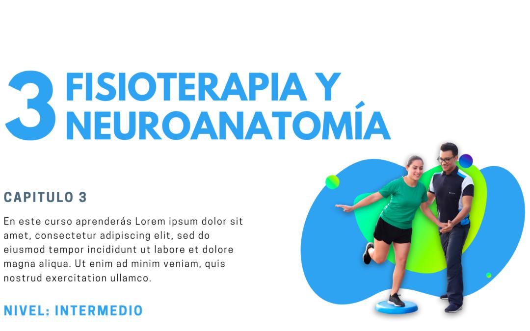 Introducción a la fisioterapia 3